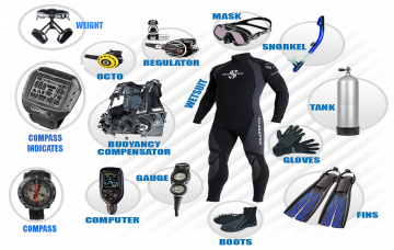 Scuba Diving: Necessary Gear